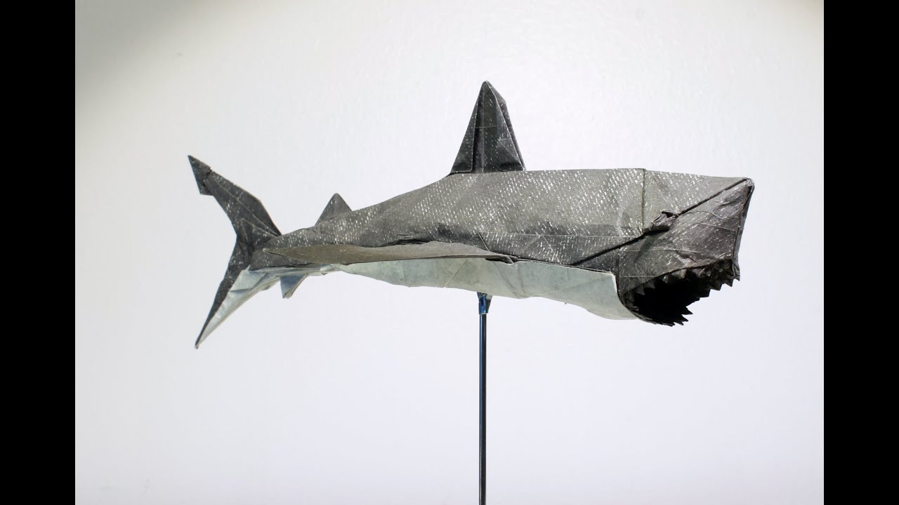 Origami Great White Shark - YouTube for Great White Shark Diagram  75sfw