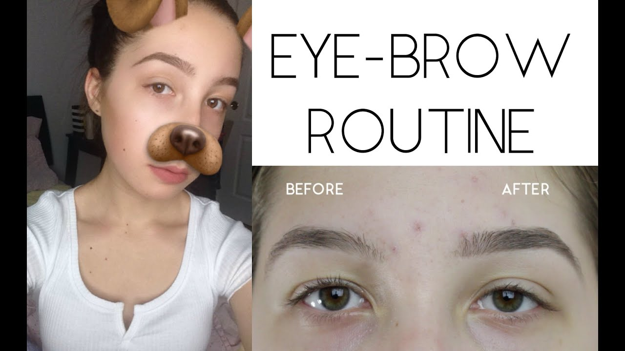My Eyebrow Routine Diy Eyebrow Growth Serum Stesha Youtube