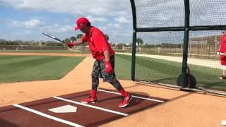 Kolten Wong batting cage swings in slo-mo.