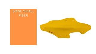 Video: SPINE SMALL FIBER