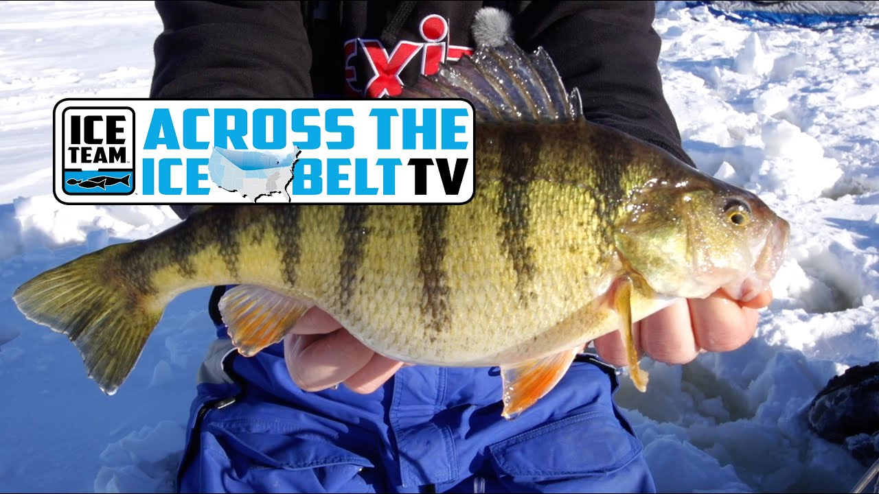 Jumbo Perch Fishing on Lake Gogebic in Michigan's Upper