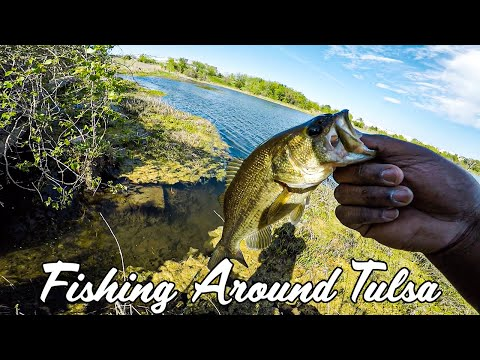 This Bait Kills In GRASS! Fishing Around Tulsa (Part.2)