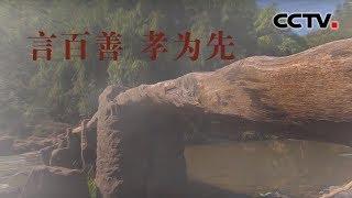 [中华优秀传统文化]言百善孝为先| CCTV中文国际