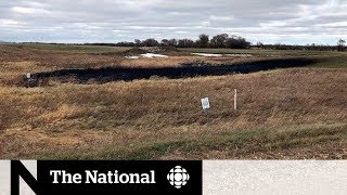 Cleanup is underway in north dakota after 1.4 million litres of oil leaked from the keystone pipeline. to read more: http://cbc.ca/1.5343509 welcome n...