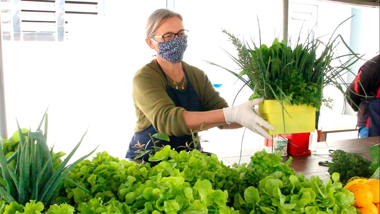 Confira o vídeo de 2 anos da Feira de Produtos Agroecológicos