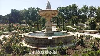 RUTA NUMERO 4  Parque del Retiro  Madrid