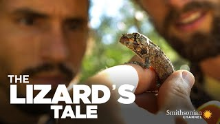 The Lizard's Tale 105: Island Test Tubes, Part 1