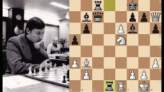 Анатолий Карпов. Цена ошибки голландского математика! Шахматы.