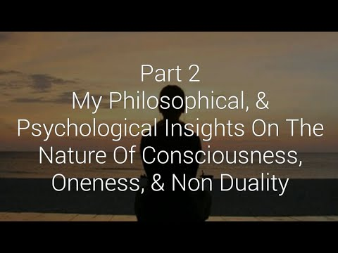 Part 2 - My Insights On The Nature Of Consciousness, Oneness, & Non Duality