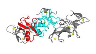 Parkin E3 ubiquitin ligase