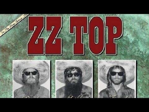 ZZ TOP - La Grange Cover by Miguel Del Rio