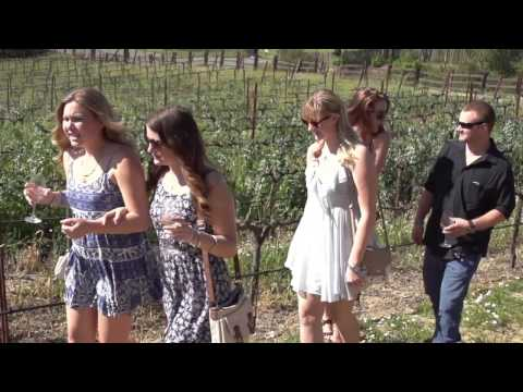 Travel Guide Sonoma County, California, United States - Festivals and Wine Events in Sonoma County