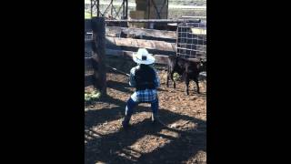 Cattle Branding at Kayser Ranch 2012