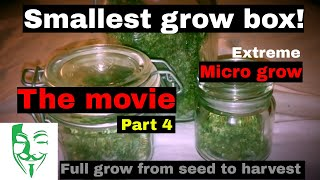 Micro Grow: From seed to harvest (PC grow box) White Widow CBD movie FULL GROW GUIDE