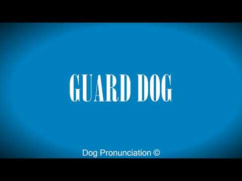 How to pronounce  GUARD DOG