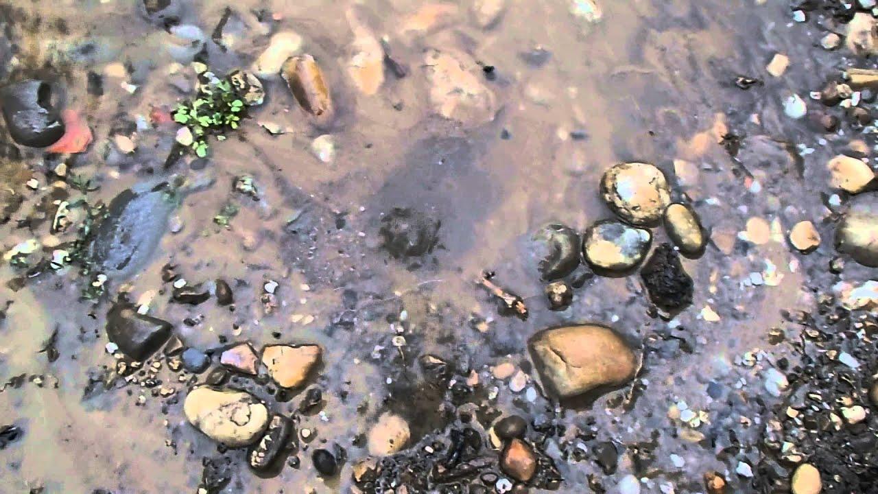 Fuite d 39 eau avant compteur youtube - Fuite d eau piscine creusee ...
