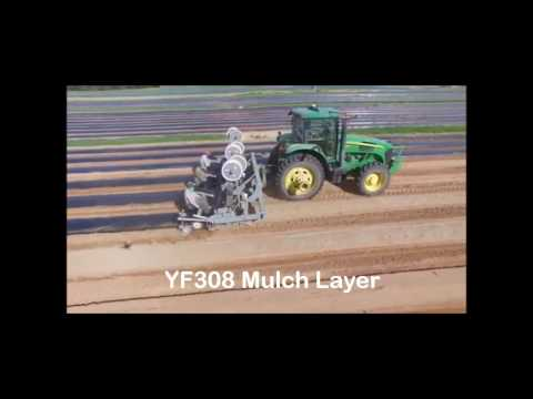 Reddick - 3 Row Bedder / Mulch Layer (YF308)