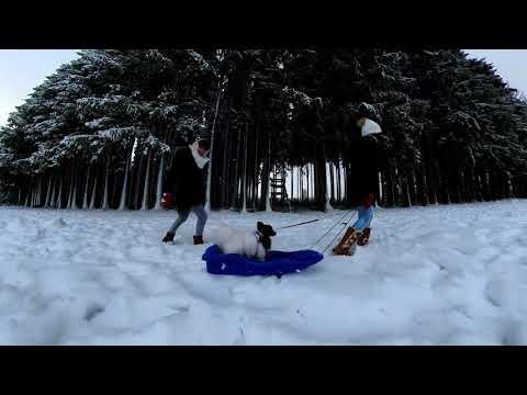 Insta360 Wandelen In De Sneeuw Bij Baraque Fraiture Youtube