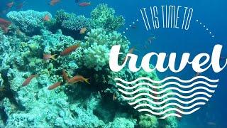 ЕГИПЕТ Красное море Шарм эль Шэйх Коралловый риф отеля Hilton Sharks Bay Resort