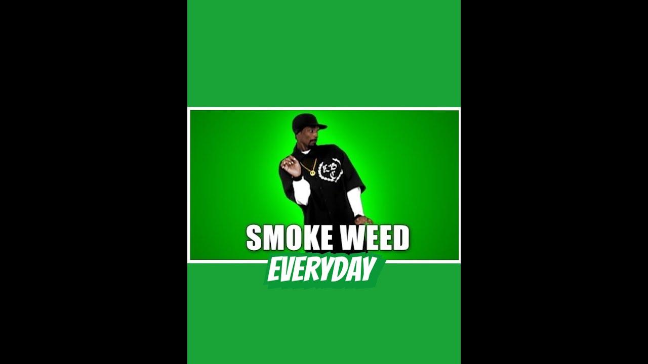 Snoop Dogg Smoke Weed Everyday HD (dubstep Remix) [Antoine