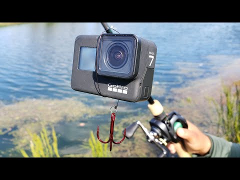 Catching Fish on a GoPro!  Epic Underwater Footage!