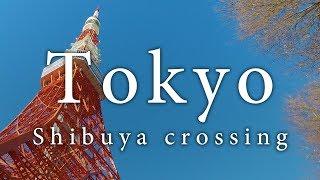 Shibuya crossing, Tokyo in 4K taken with DJI OSMO