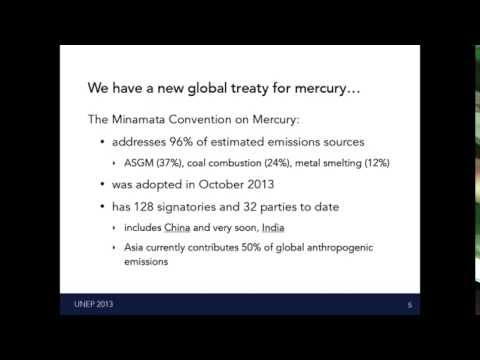 Impacts of global and regional policies on mercury emissions