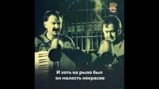 Смотреть Илья Олейников и Юрий Стоянов онлайн