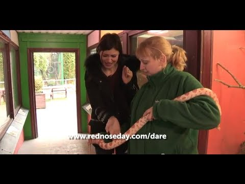 Emma Willis is dared to hold a snake | Red Nose Day 2013
