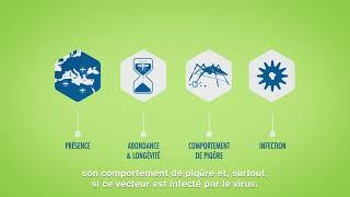 L'importance de l'entomologie médicale dans la surveillance des maladies vectorielles.