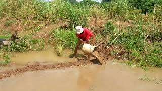 Amazing Fishing at Battambang    How to Fishing At Cambodia   By Pailin Ever  part 025