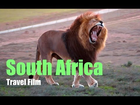 South Africa Travel including Safari
