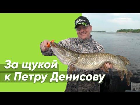 За щукой к Петру Денисову
