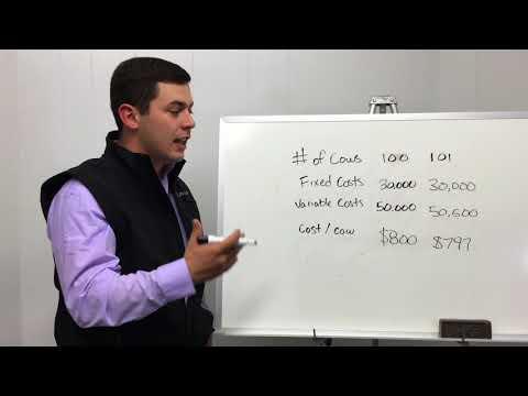 Whiteboard Chat: Cow Herd Profitability
