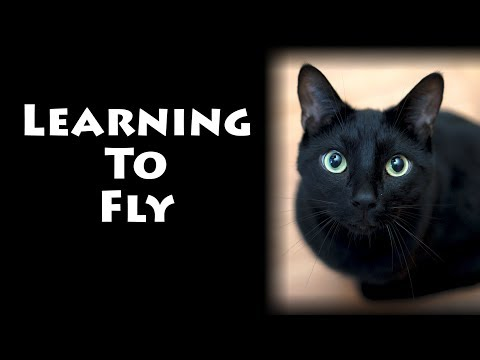 Learning to Fly - Lyric Version