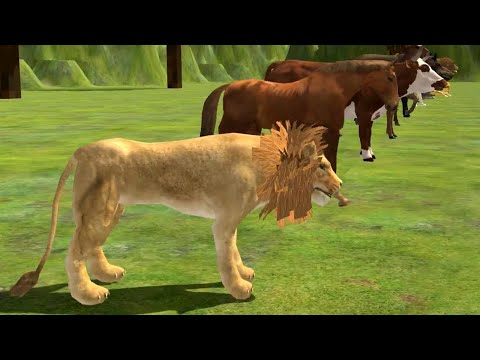 Wild animals race | animals race | which is fastest animal |  cheetah race | lion race | horse race