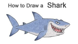How to Draw a Shark (Cartoon)