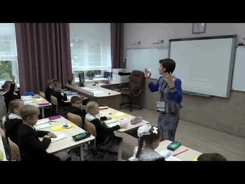 Урок мира в начальной школе видео