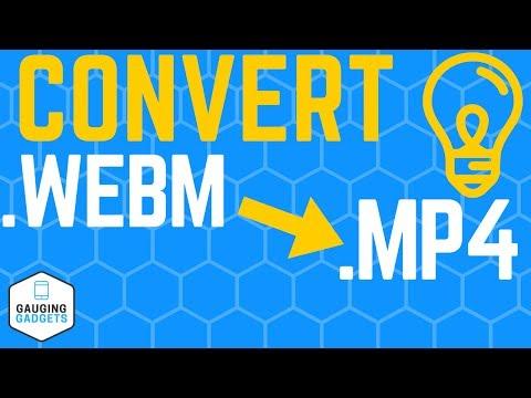 WebM To MP4 Converter - Free WebM Converter