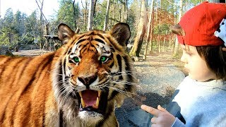 Let's Go to the ZOO with TimKo Kid Adventures Vlog | Tim's Family Feed Wild Animals at the Zoo