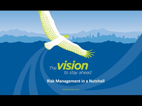 Risk Management in a Nutshell