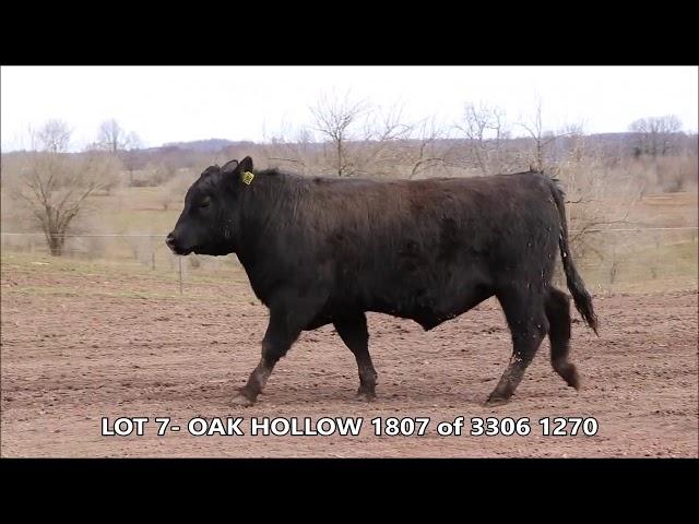 Oak Hollow Lot 7