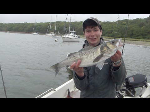 Estuary Bass And Smoothound Fishing : Bates Fishing