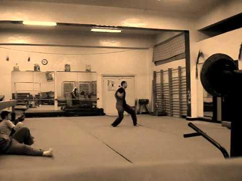wushu kung-fu -syrian hero