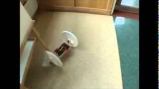 AxlBot 2002: 2 wheeled robot using Mark Tilden BiCore oscillators
