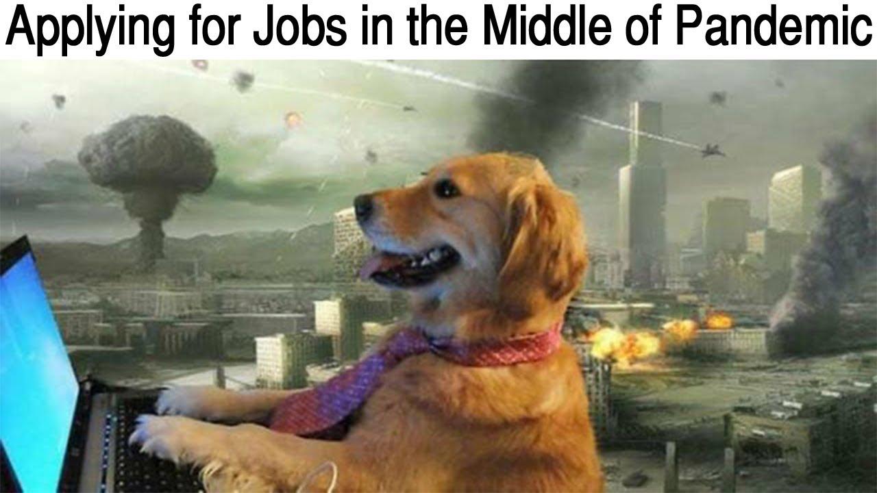 Dark Mode Memes V169