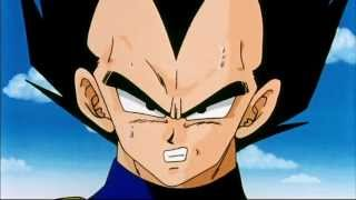 The Awesomeness that is Vegeta.