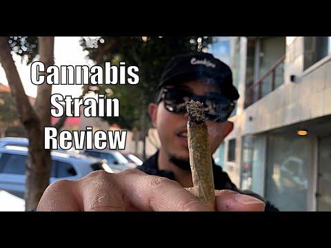 Exotic Cannabis Strain Review: Zookies , Plus Secret Joint Rolling Trick