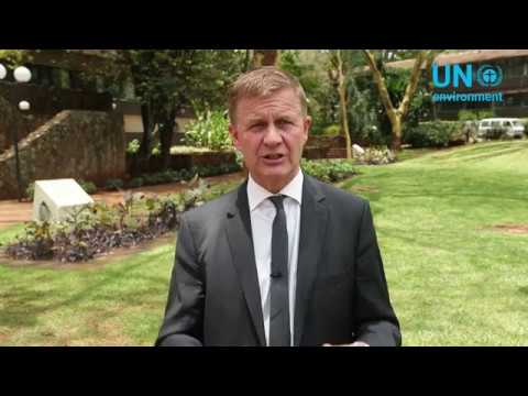 ISA is a milestone in the fight against pollution & climate change: Erik Solheim