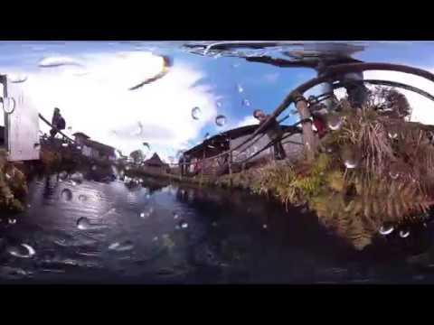 忍野八海 VR(水中) 中池